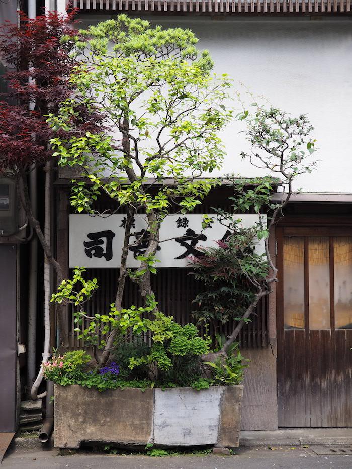 Exploring Asakusa
