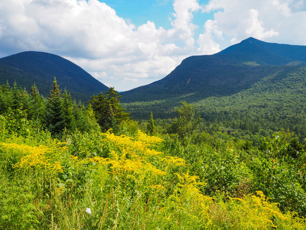 Views from Kancamagus Highway