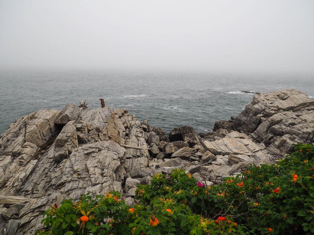 Foggy day on Cape Elizabeth