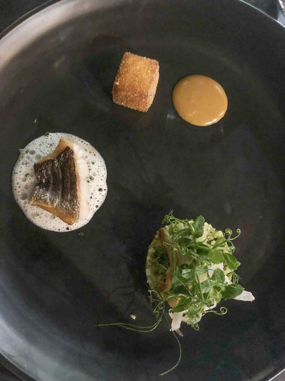 Pan fried fish with lemon tarragon veloute, fried pannise, and the most incredible smoked mussel aioli, served with bulgur