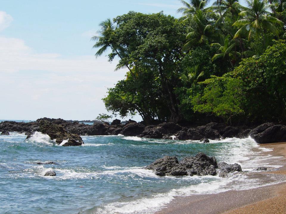 Costa Rica Travel Guide: Corcovado