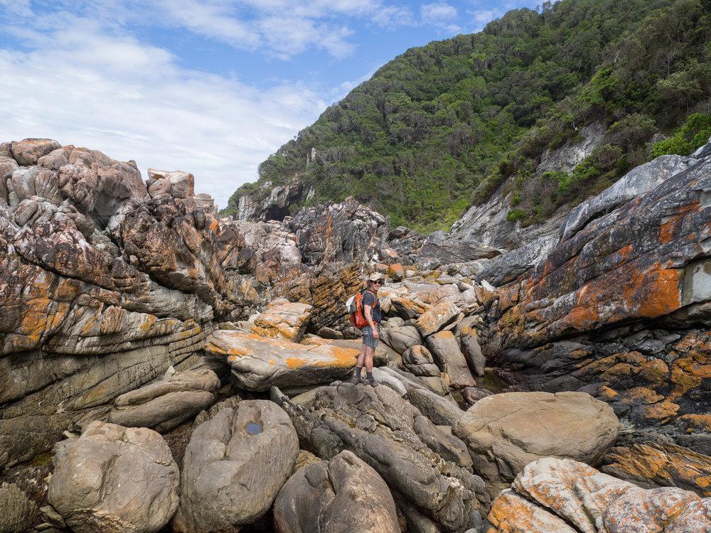 South Africa Travel Guide: Tsitsikamma National Park
