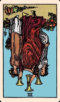The Card of the Day: The Three of Cups (Reversed) — Elliot