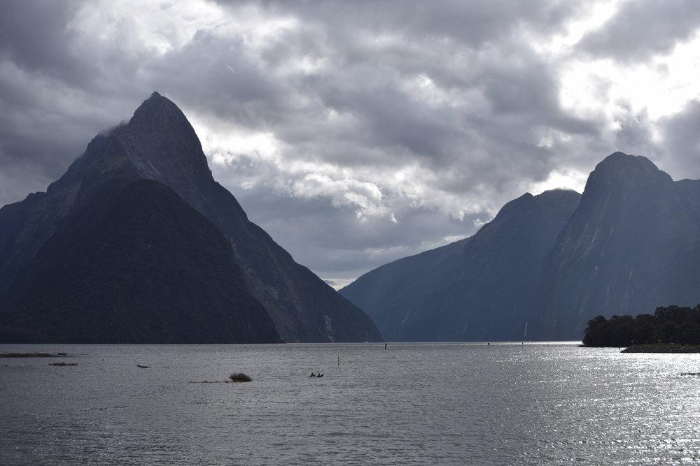 KANO Travel & Trip to Milford Sound | New Zealand