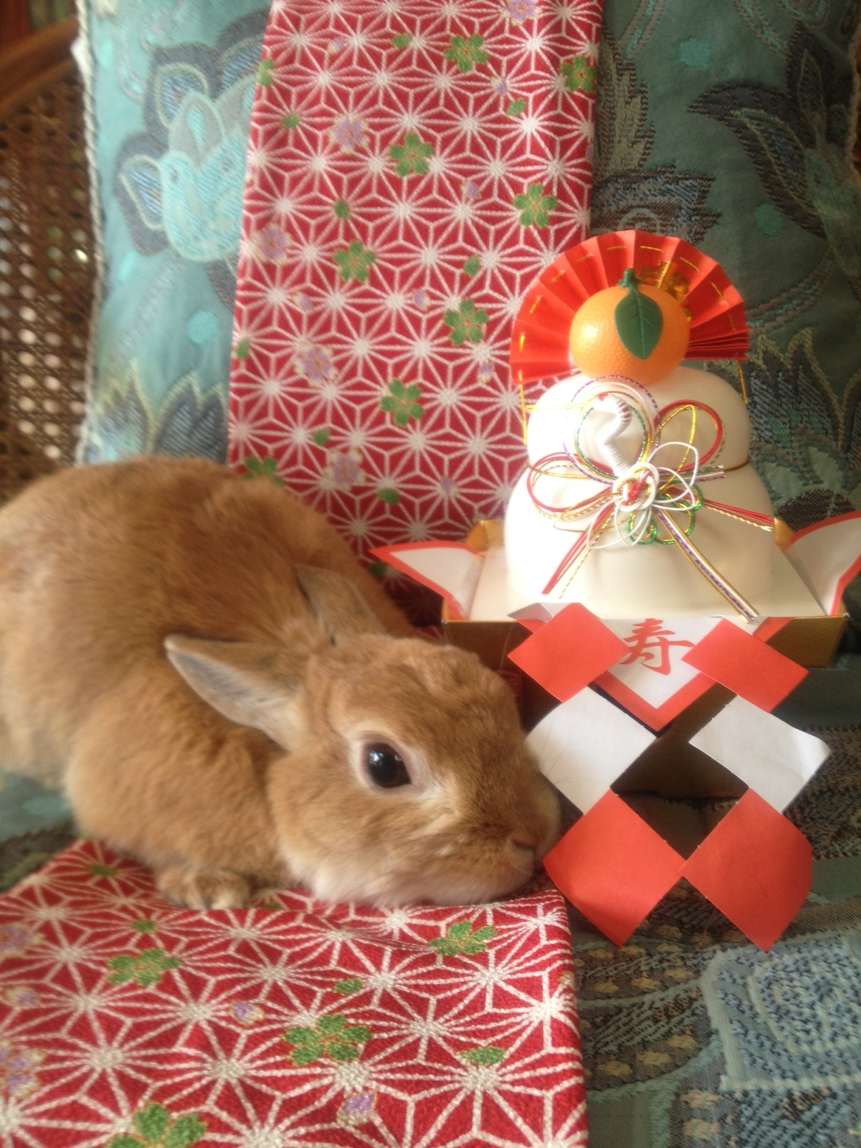 Bunny Celebrates the New Year in Japan with Kagami Mochi