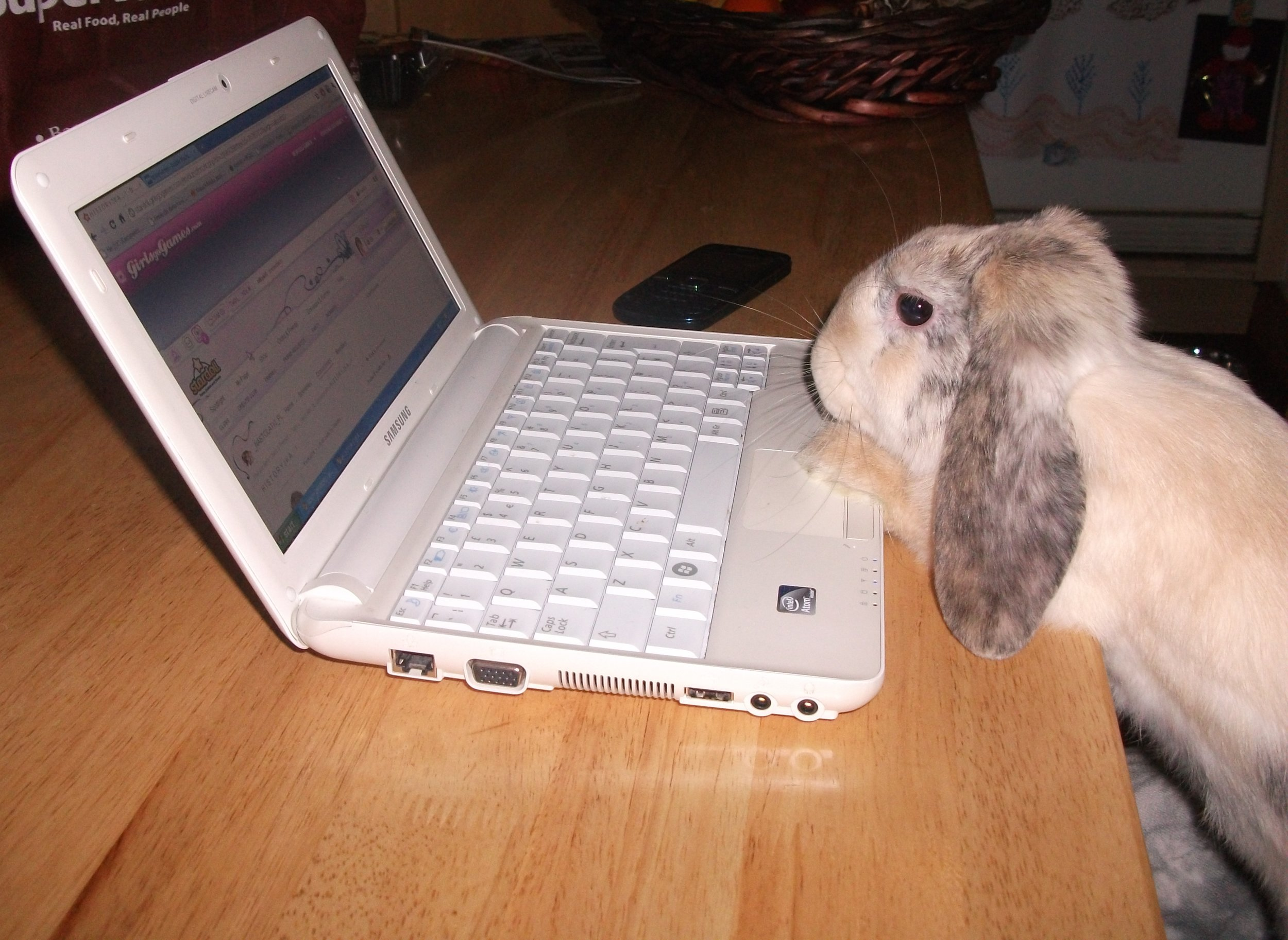 Hmm... Now, How Can I Order Carrots on This Thing?