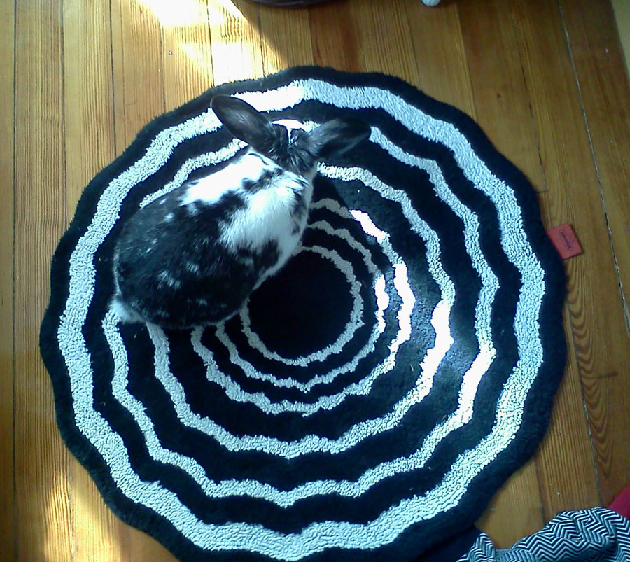 Bunny's Favorite Rug Looks Like the Entrance to a Rabbit Hole