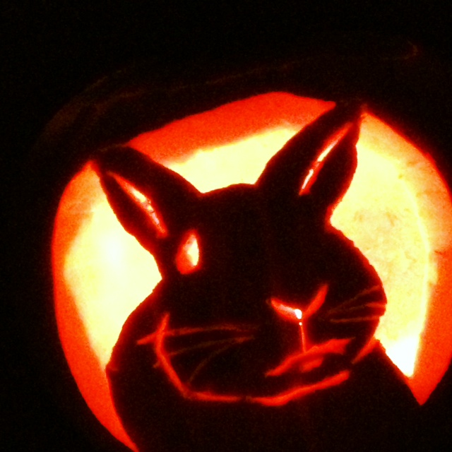 The Daily Bunny's Halloween 2013 Mega-Post! 2