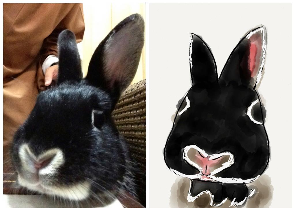 Bunny Sits for Her Portrait to be Painted