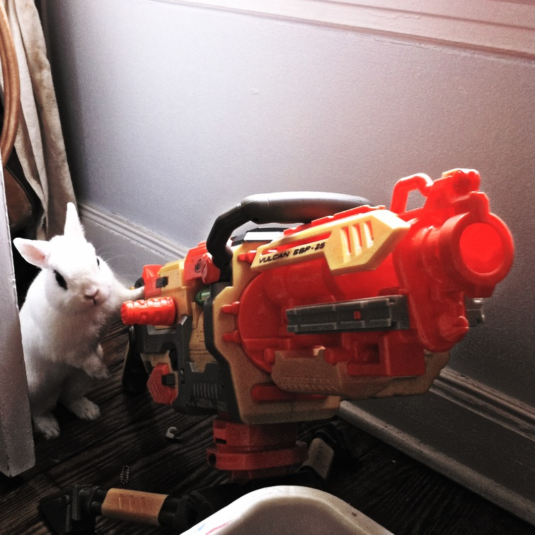 Bunny Plans to Use the Nerf Gun to Break Open the Refrigerator Once and for All