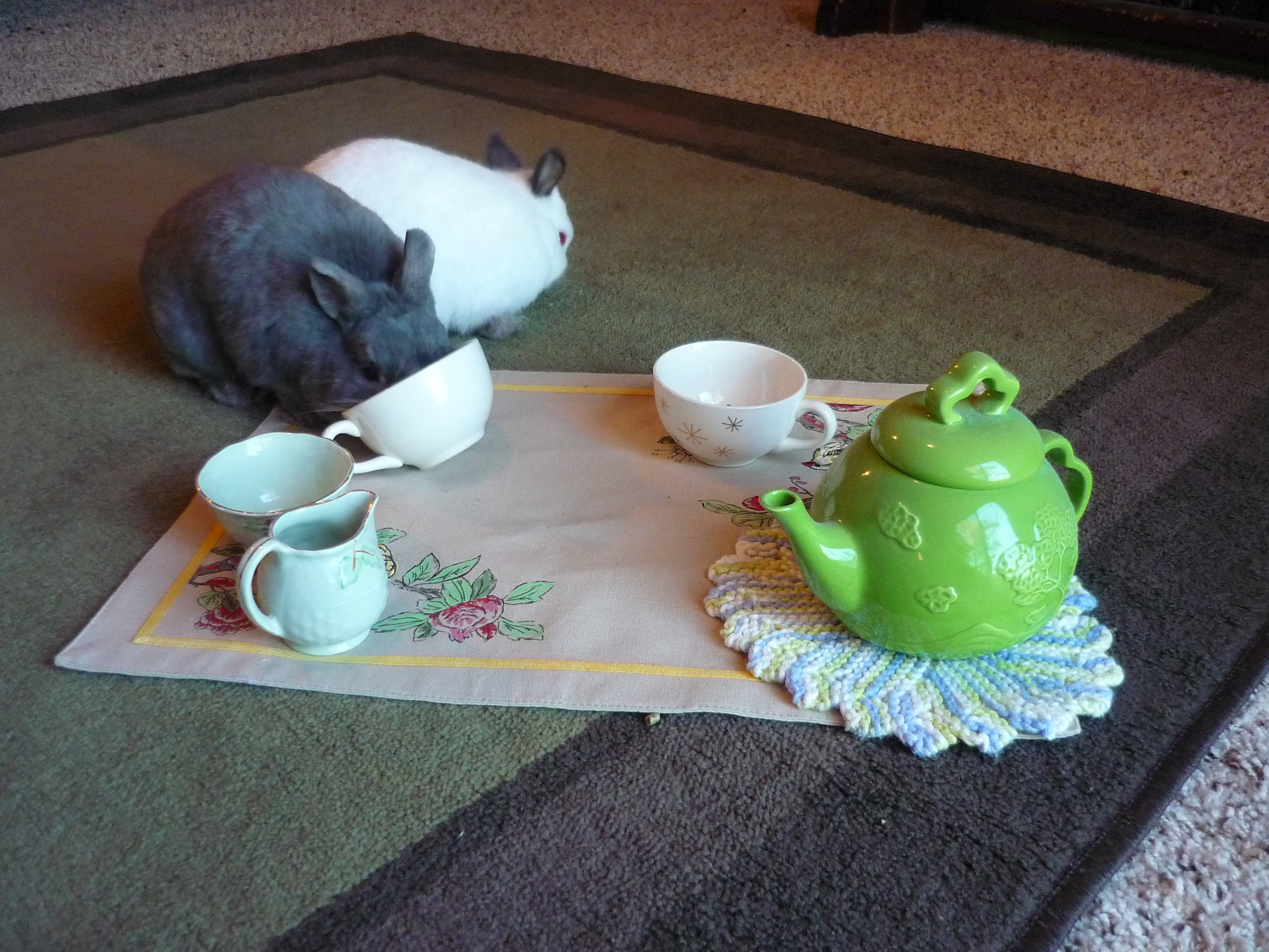 Bunnies Have a Tea Party 3