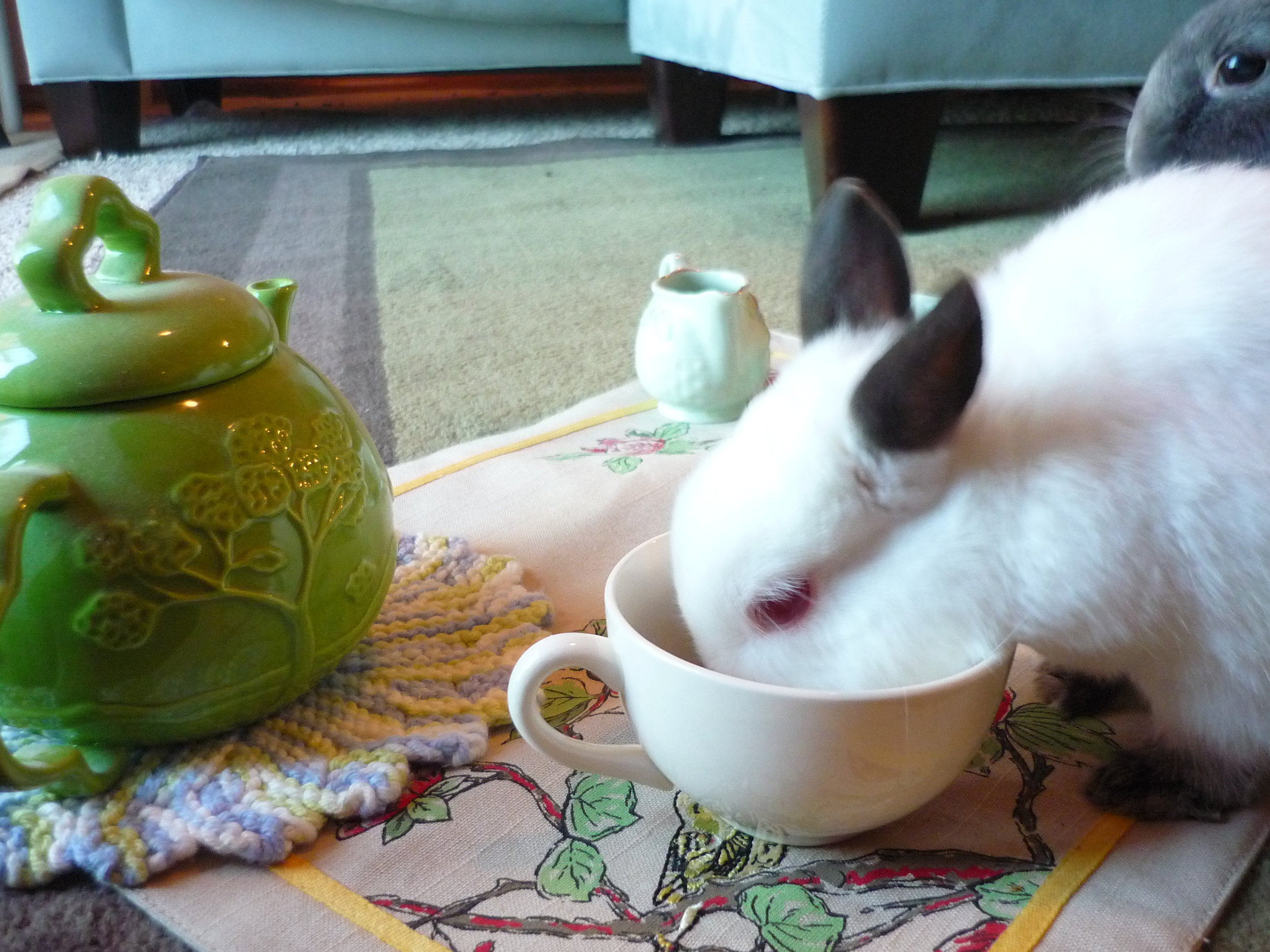 Bunnies Have a Tea Party 4