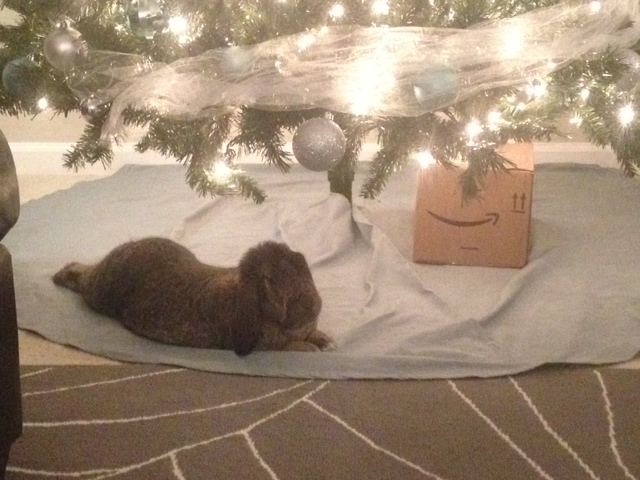 The Daily Bunny's Christmas 2013 Mega-Post 12