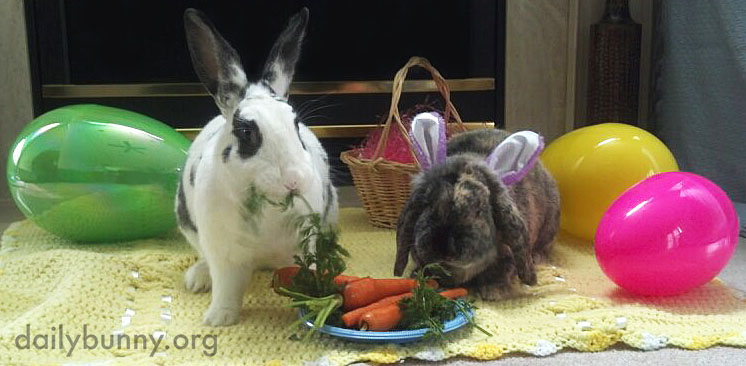 The Daily Bunny's Easter 2014 Mega-Post! 6