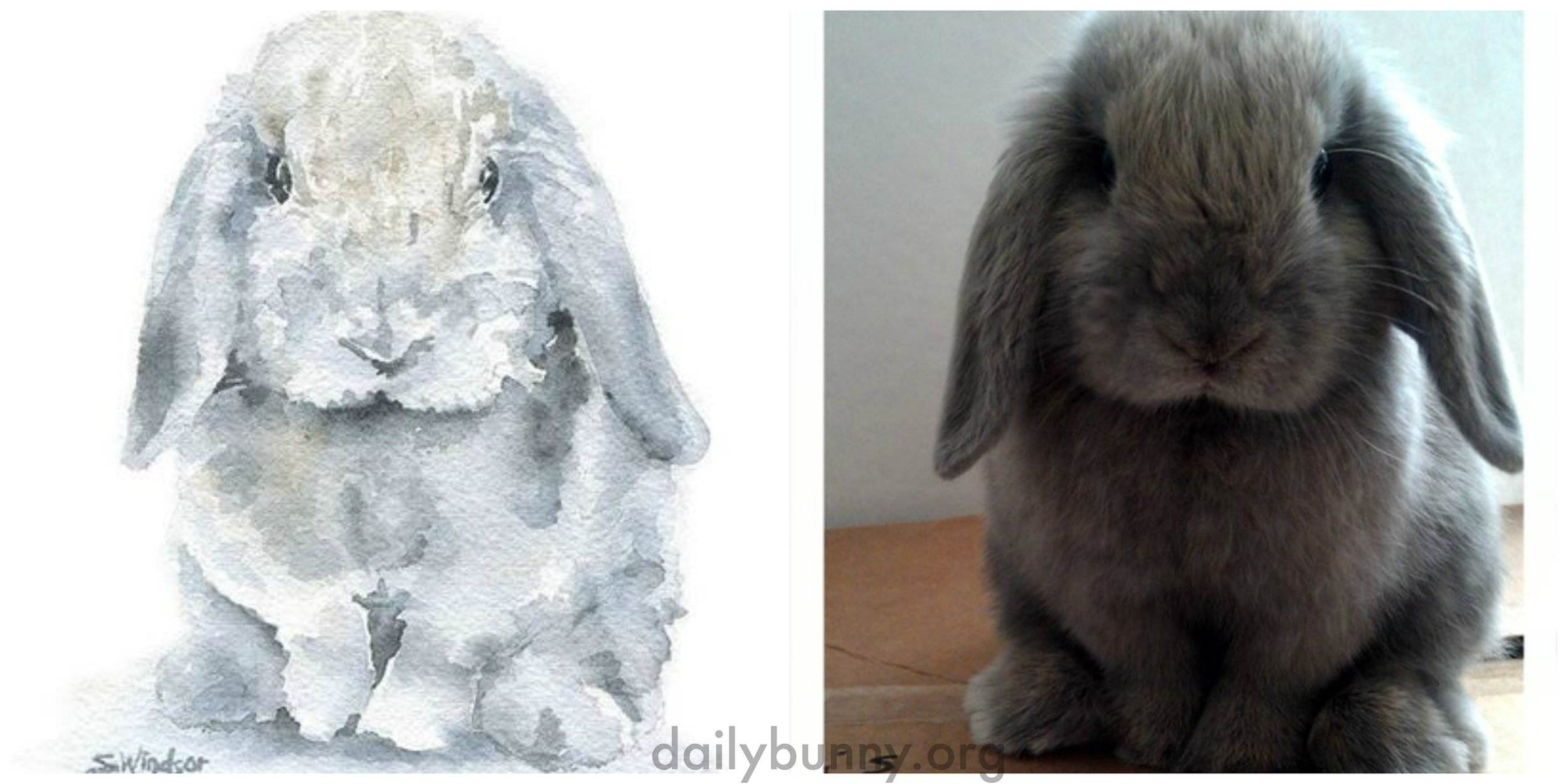 Bunny Has Commissioned a Portrait of Himself