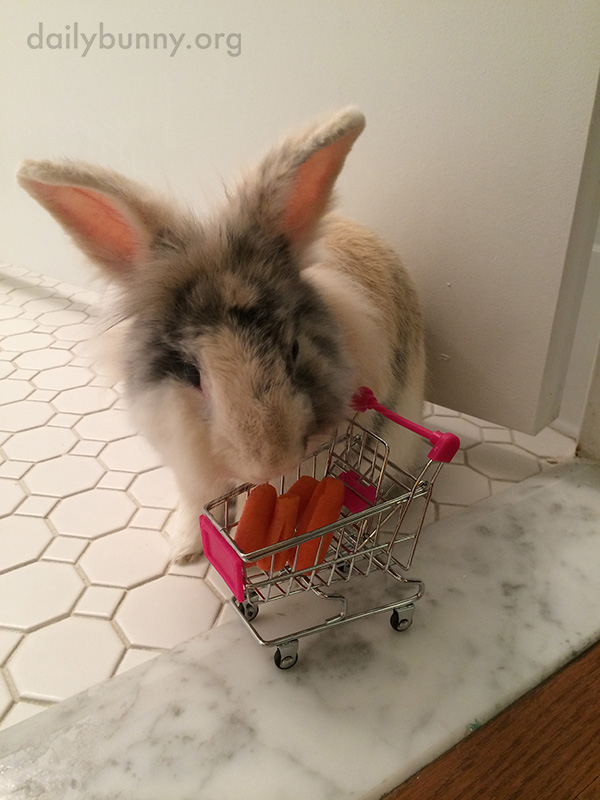 Bunny Starts His Shopping Trip with an Empty Cart, But Soon Fills It with Tiny Carrots 2
