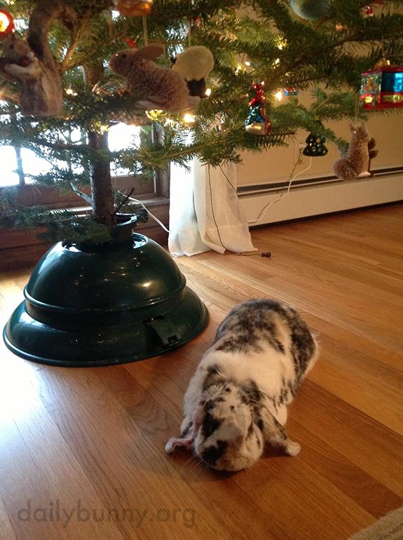 It's the Daily Bunny's Christmas 2014 Mega-Post! 16