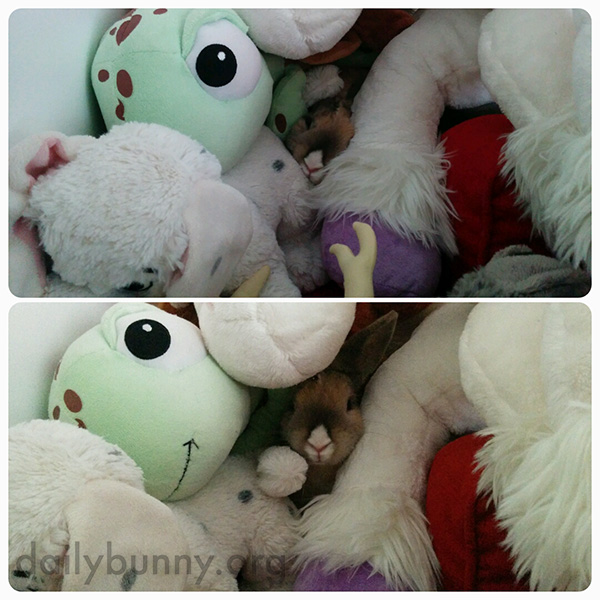 Bunny Burrows into a Giant Plush Pile