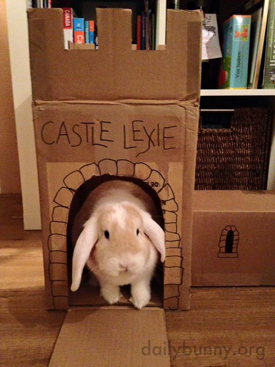 A Bunny's Castle Is Her Castle 1