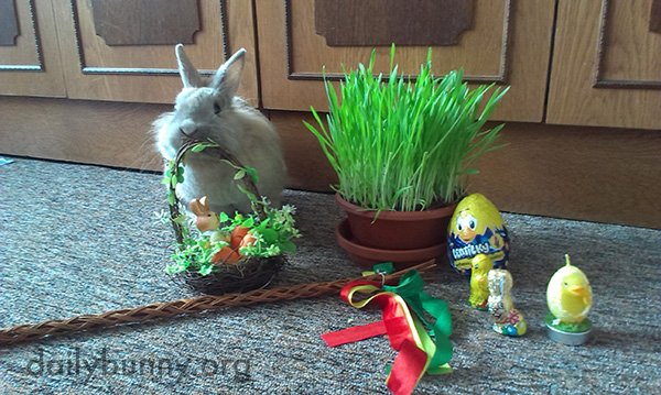 It's the Daily Bunny's Easter 2016 Mega-Post! 3