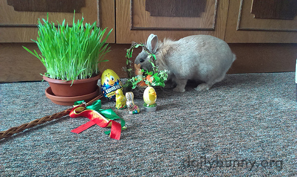 It's the Daily Bunny's Easter 2016 Mega-Post! 4