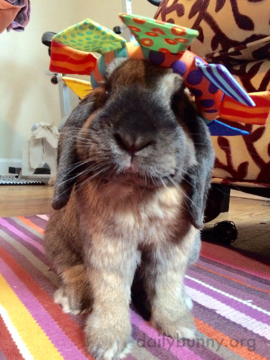 A Toy Makes a Festive Hat for Bunny 1