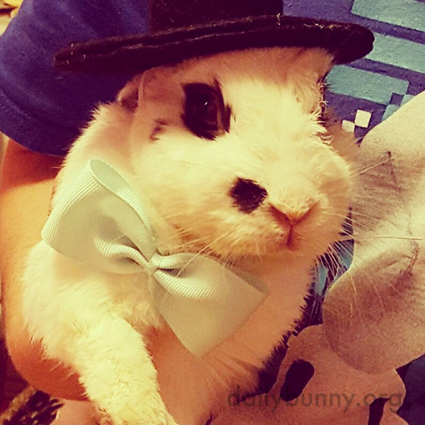 Bunny, You Look So Dapper in That Hat!