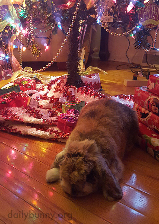 It's the Daily Bunny's Christmas 2016 Mega-Post! 7