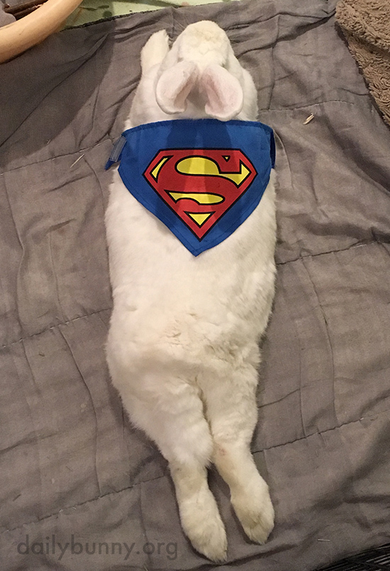 Superbunny Takes a Break from Fighting Crime 1