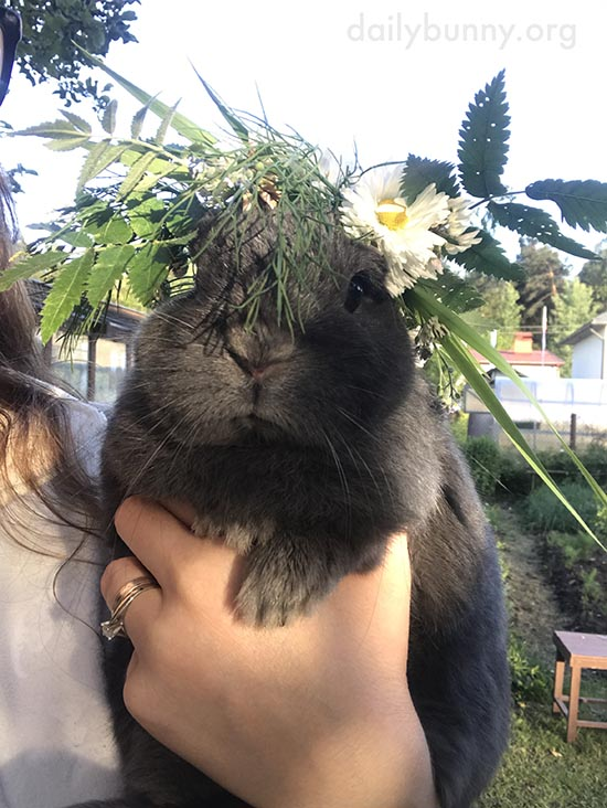 Bunny Celebrates Midsummer with a Tasty Wreath