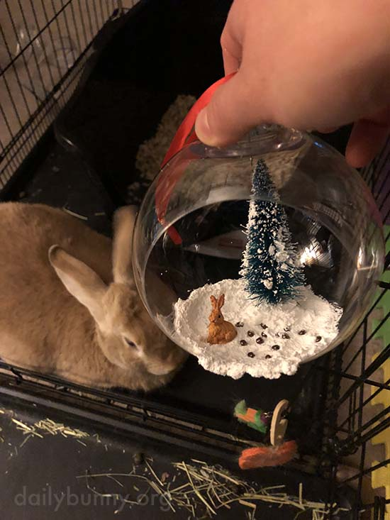 It's the Daily Bunny's Christmas 2017 Mega-Post! 6