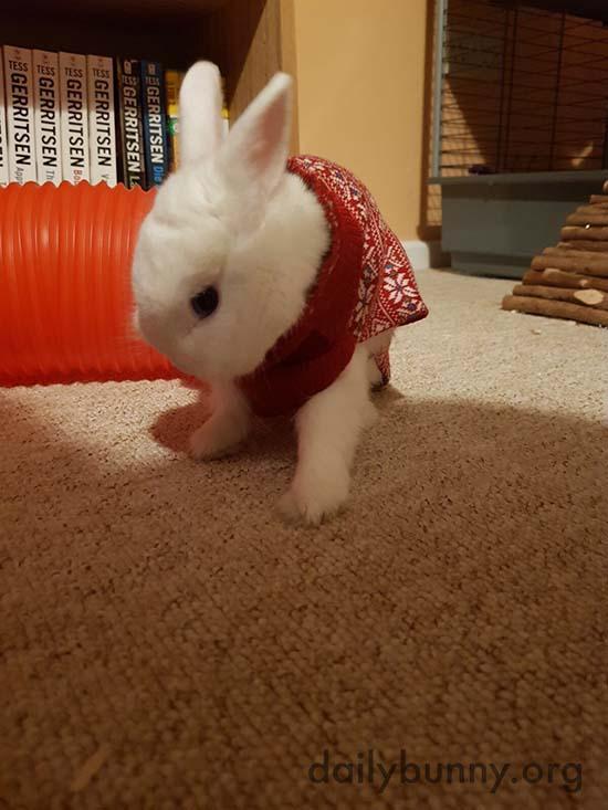 More Christmas Bunnies! 2