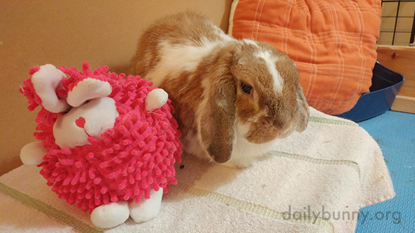 Bunny and His Friend Spend Some Quality Time Together