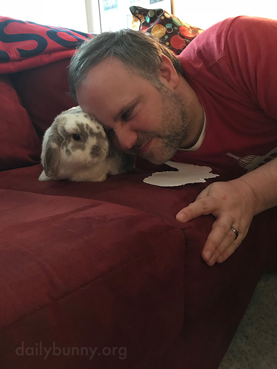 Bunny Gives His Human Face Nuzzles 1