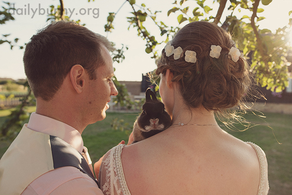 Bunny Is Guest of Honor at Her Humans' Wedding