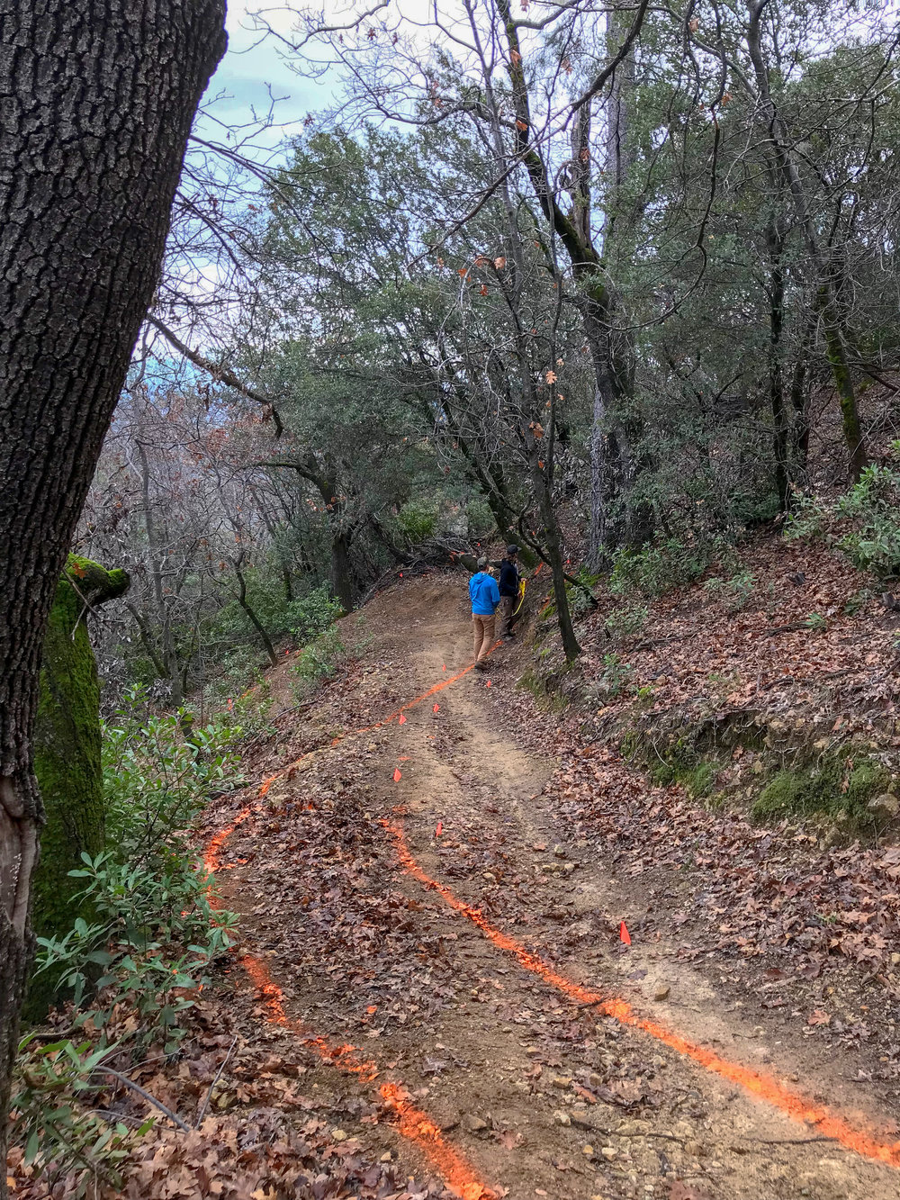 Re-routing the last steep switchback in the middle of the trail