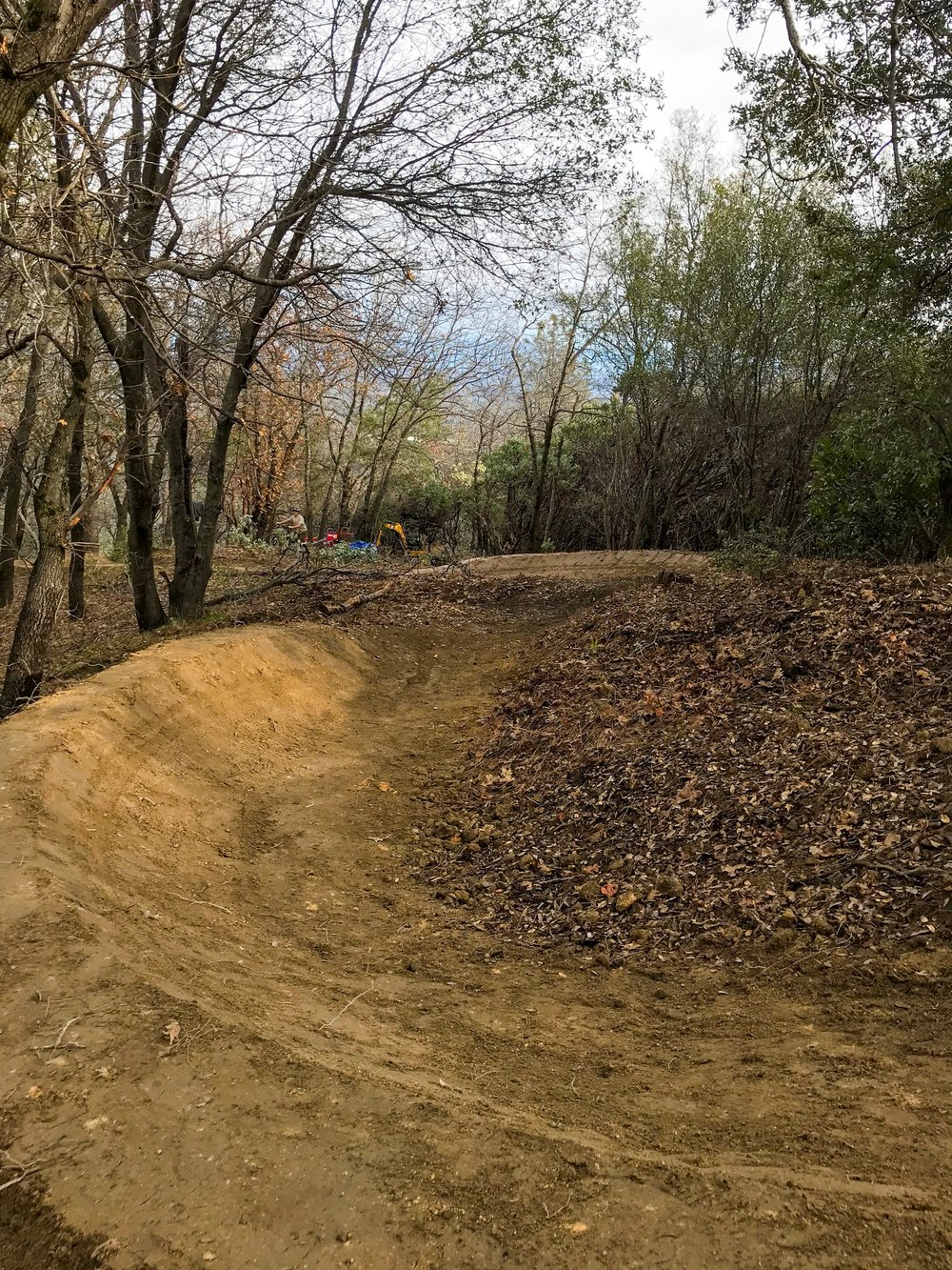 Finished berms (looking downhill)
