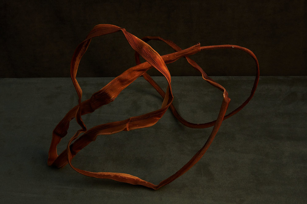 marin-artists-lina- 450.jpg