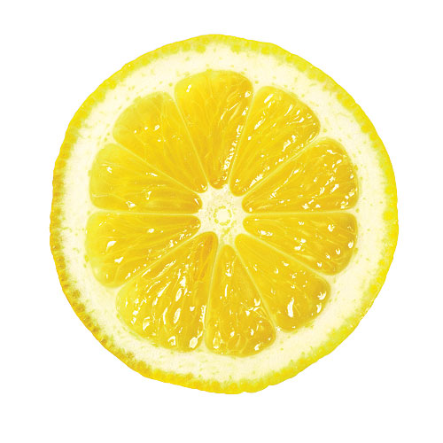1003p48-lemon-slice-x.jpg