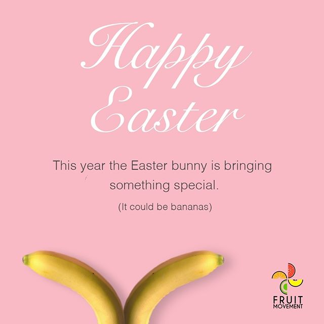 Happy Easter to all our Peeps! 🐣 🐇 🐰 👯‍♂️ 👯‍♀️ 🐤 🕊️ #eastersunday #love #eggs #holiday #easteregg #God #instagood #cute #love #break #happiness #iphonesia #follow #photooftheday #nomnom #instalike #easterbasket