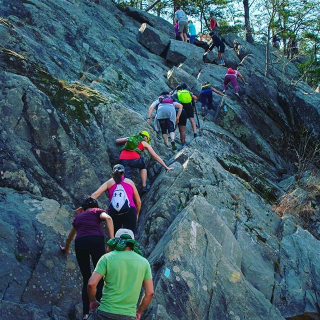 Don't look back now, we're heading to the top!!! ⛰️🌄 Our Fruit Hike is this weekend! Make sure you follow us on FB or Meetup (link in bio) in order to get up to date information on rides, tips and exact meeting location!  Also remember, the early bird gets the worm 🐛...or a Fruit Movement surprise! (Your pick) ⛰️ 🏞️ 🌄 🥾 🚶‍♀️ 🚶‍♂️ #fruit #movement #fruits #outdoors #optoutside #nature #adventure #freshair #active #fitness #nutrition #fitfam #gains #workplacewellness #health #healthyoffice #shenandoahnationalpark #ravenrock #facts