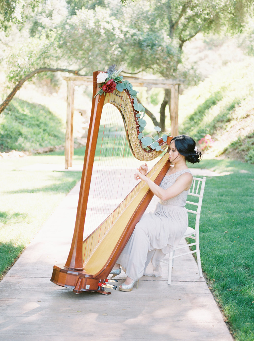 Solo - Harp.jpg