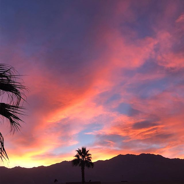 No filter view from kitchen! #bestviewinpalmsprings #cheftanyaskitchen #vegansseebetter #eatplants #palmsprings