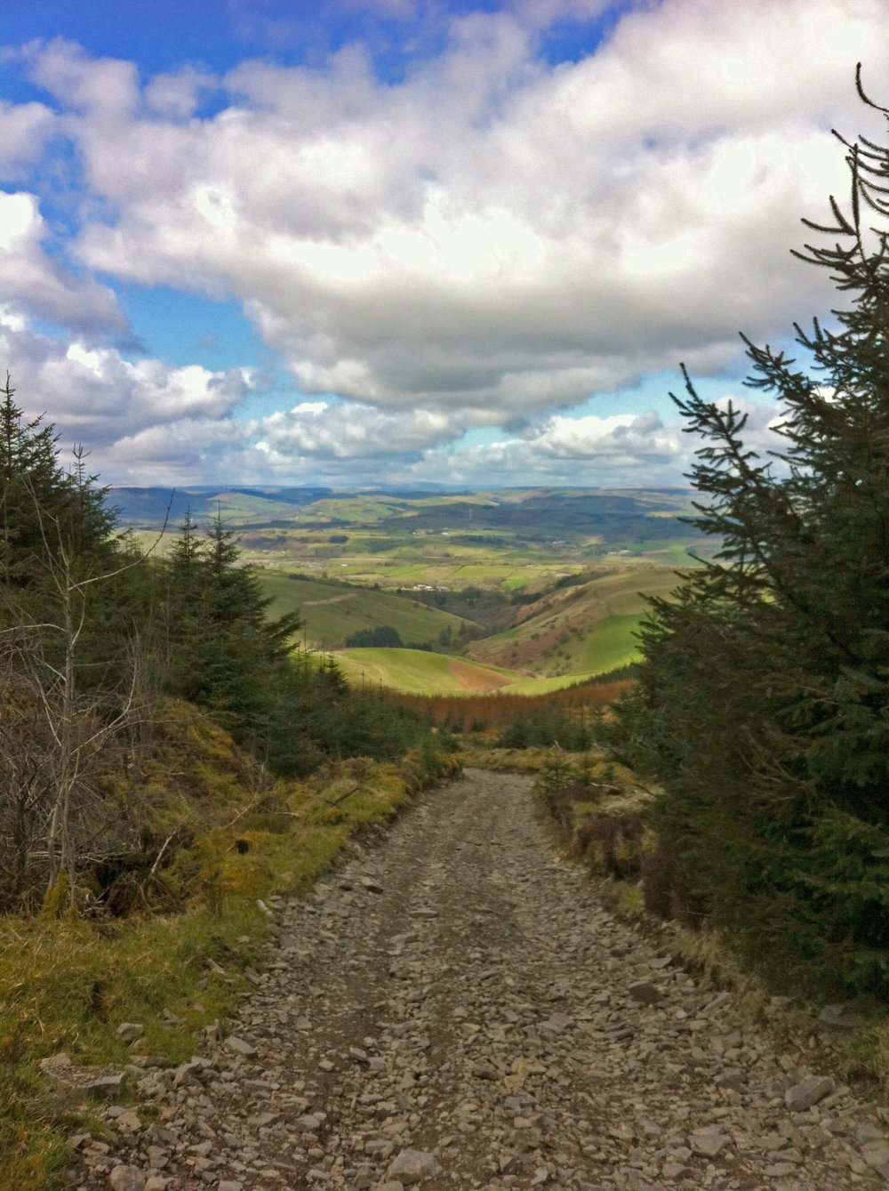Track from Black Mixen towards Drovers Retreat