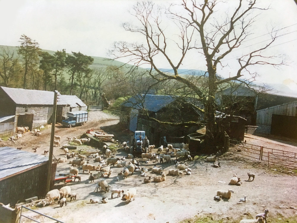 the farmyard as a working farm in 1988