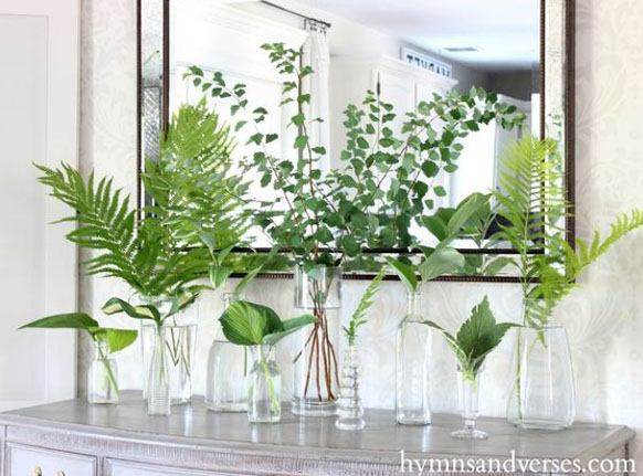 https://hymnsandverses.com/2016/07/shade-perennials-in-decor.html