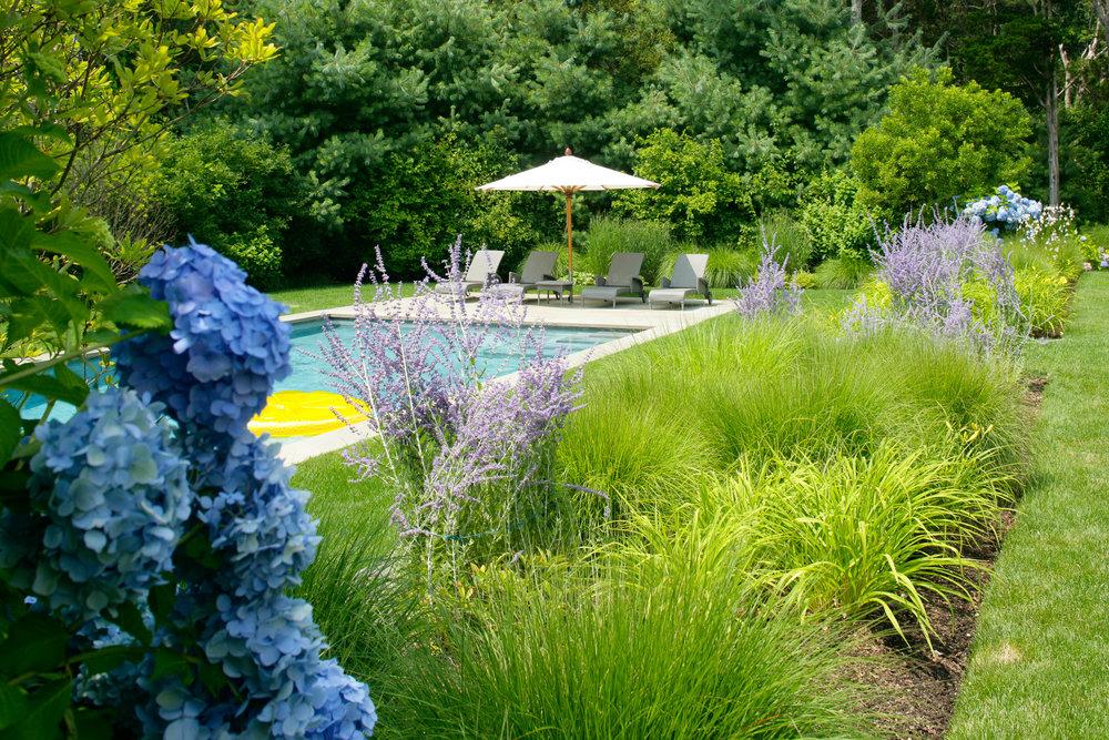 Frederico_garden-8541.jpg