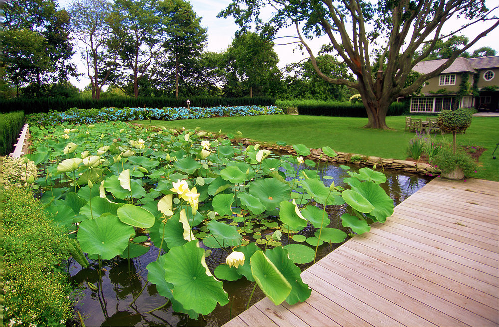 01-080-pond_Water Garden_fix.jpg