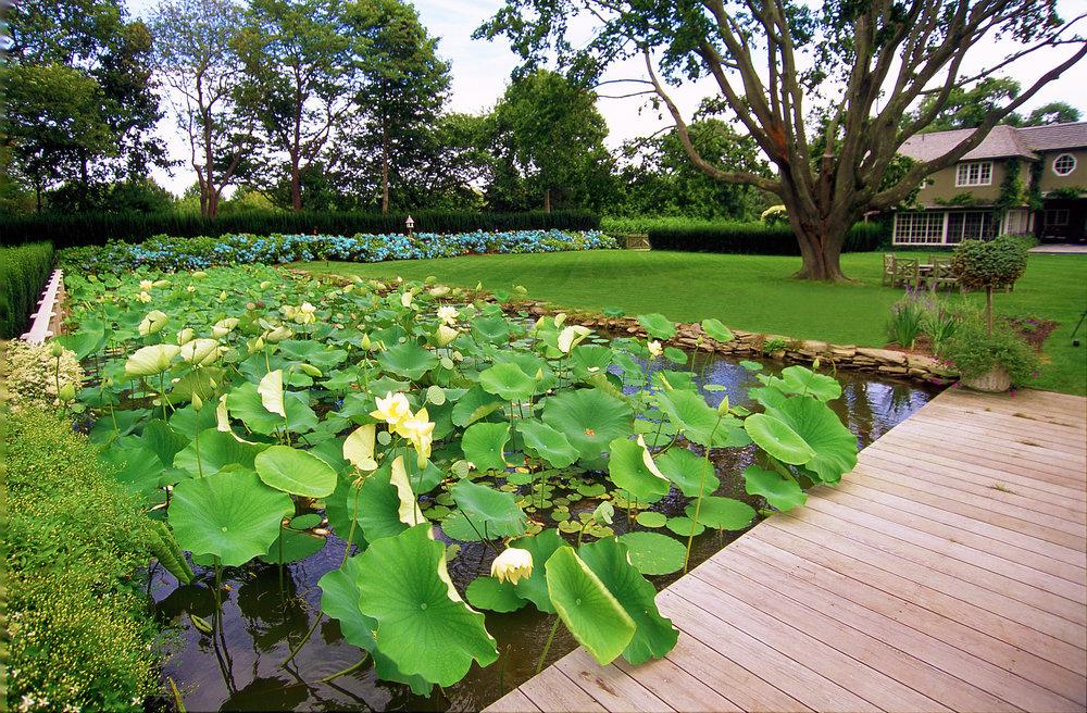 01-080-pond_Water Garden_fix.jpg