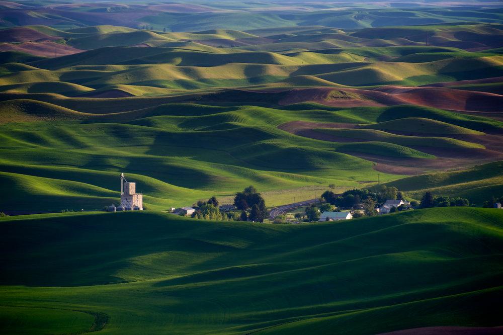 whitman-county-growers.jpg
